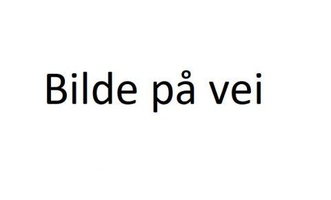 KLIPS PÅ SIDE AV TREKK INNVENDIG BAKLUKE 855